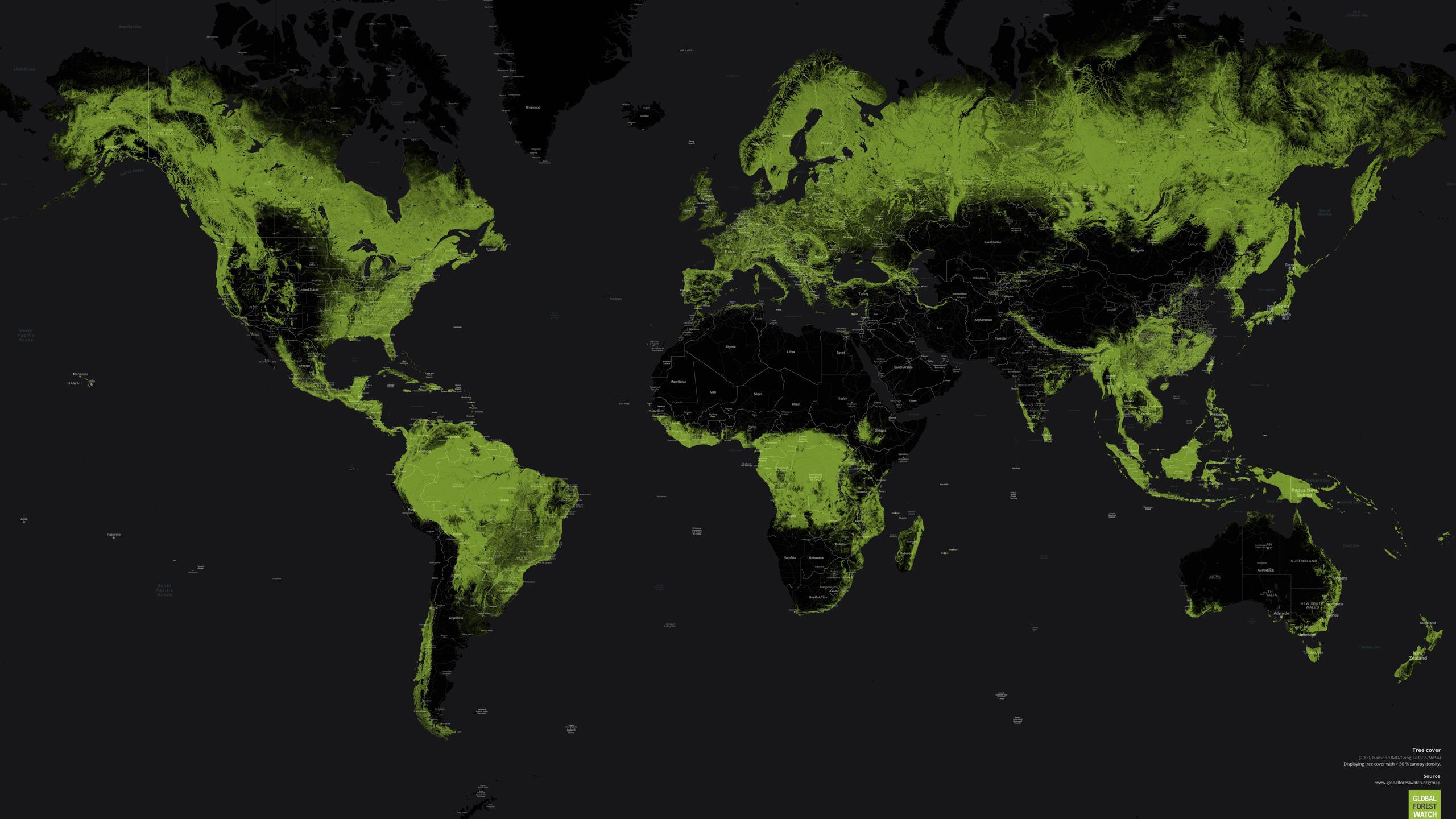 Impacto en los bosques del mundo